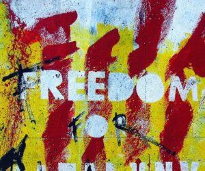 Freiheit durch Wissen? - Rousseau und Foucault im Vergleich