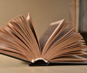 Autorin werden - mein Weg zum Buch
