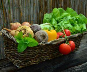 Tipps zum Lagern von Lebensmitteln