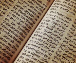 Neueröffnung des Bibel-und archäologischen Museums