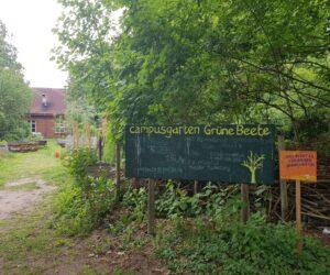 Urban Gardening Projekte in Münster
