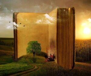 Reisen mit Romanen