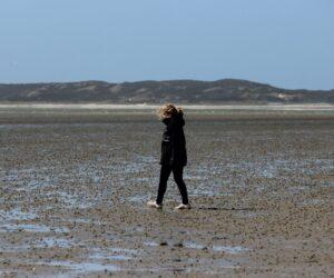 Einblick in die Arbeit eines Meeresbiologen