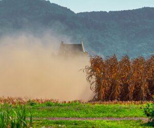 Landwirtschaft: Das Problem mit der Trockenheit