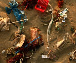 Plastikmüll im Meer vermeiden