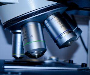 Gender Data Gap bei Medikamenten