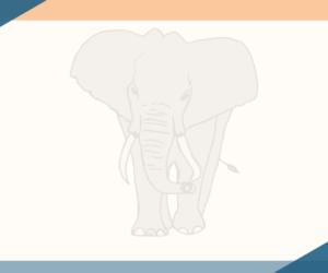 Mitschnitt der Elefantenrunde