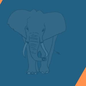 Live: Elefantenrunde 2020