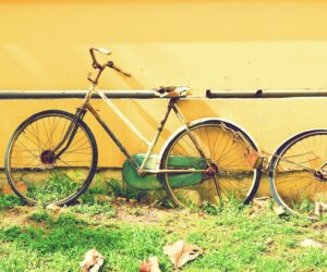 Münsters verwahrloste Fahrradseelen