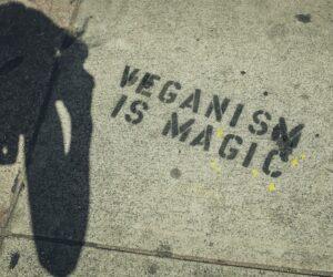 Nährstoffmangel im Veganismus