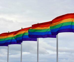 Flagge zeigen im Pride-Monat! Aber welche?